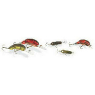 Big Rock Sports 0141-1275 2 Inch 1/5 Ounce Rebel Craw Lure