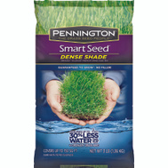 Pennington Seed 100526625 Seed And Dense Shade Mix-C -3#