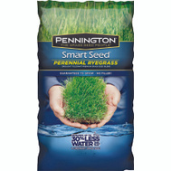 Pennington Seed 100526658 Seed Perennial Rye Blend 3 Pound