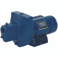 Pentair FSNDH Sta Rite Jet Pump Shallow Well 3/4 Hp