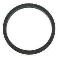 Chapin 6-3382/1-3382 Compression Sprayer Cover Gasket