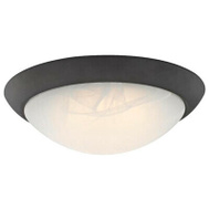 Westinghouse 63089 Fixture Ceiling Led Orb 11In