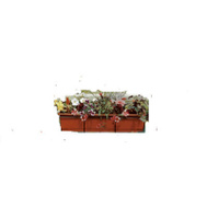 Midwest Air Technology F2436-B Black Flower Box Holder