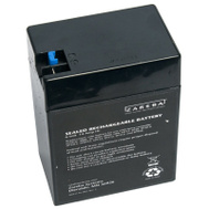Fi Shock ASB30-2 6v Battery