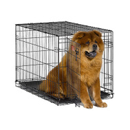 Midwest Pets 1536 36 Inch Dog Training Crate