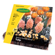Van Bloem 15224 Green Thumb GT 24CT Apr Sunset Bulb