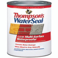 Thompsons 24104 Clear Multi Surface Waterproofer Low VOC Quart