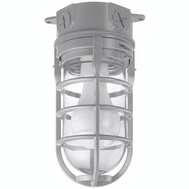 Thomas & Betts MCL150C Carlon Fixture Ceil 1Lt Waterprf Cage