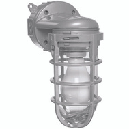 Thomas & Betts MCL150W Carlon Aluminum Cage Wall Mount Light