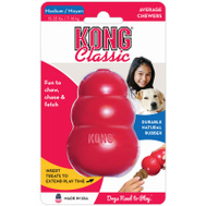 Phillips Pet T2 Kong MED RED Class Toy