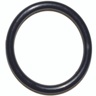 Danco 35754B #40 O Ring