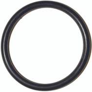 Danco 35879B #99 O Ring