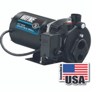 Wayne Water CWS75 3/4 Horsepower Deep Well Jet Pump