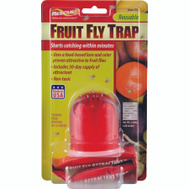 Sterling FFTR-BB4 Trap Fruit Fly Single Pack