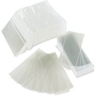 Paper Products 70133 500 Pack 1.24 By 3 1/4 Shield