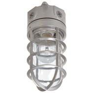 Cooper Lighting VT100G Floodlt Flush Mnt Otd Vap 100W