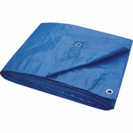 ProSource T0810BB70 Economy Blue Tarp 8 By 10 Foot Light Duty