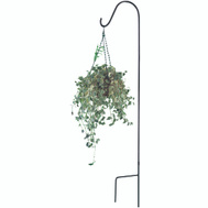 Landscapers Select GB-3089 Hook Shepherd Single Blk 64In