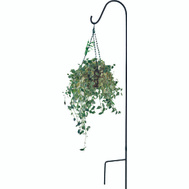 Landscapers Select GB-3090 Hook Shepherd Sgl Black 84In