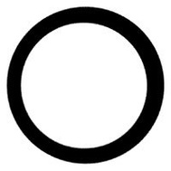 Pentair OK25-DC6-S06/S6 Omnifilter Replacement O Ring For U25