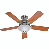 Hunter Fan 53249/28723 Pros Best Fan Ceil 52In 5Bld/1Lt 5Min Bn
