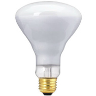 Globe Electric 70811 WestPointe 50 Watt Br30 50 Watt Flood Bulb