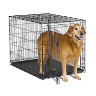 Midwest Pets PE-842 PE 42 Inch SGL DR Dog Crate