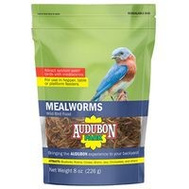 Global Harvest 12816 Food Bird Mealworm 8 Ounce