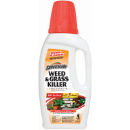 Spectrum HG-56009 Spectracide Killer Weed/Grass Concent 40 Ounce