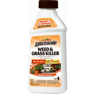 Spectrum HG-66001 Spectracide 16 Ounce Weed/Grass Killer