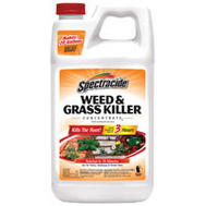 Spectrum HG-96451 Spectracide Killer Weed/Grass Conc 64 Ounce