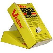 Woodstream M180CAN Victor Trap Glue Mouse Board 2Pack 2 Pack