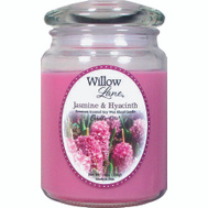 Candle Lite 1646622 19 Ounce Jas/Hyac Candle