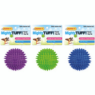 Westminster Pet 80610 Toy Pet Dental Ball Spiky 3In