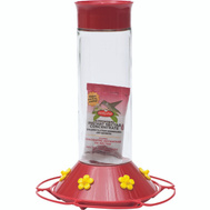 Perky Pet 209B Hummingbird Glass Feeder 30 Ounce
