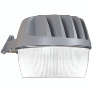 Cooper Lighting AL3050LPCGY All Pro Light Area Led W/Photocell