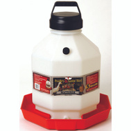 Miller Mfg PPF5 Fountain Poultry Plastic 5Gal