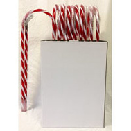Santas Forest 19201 Candy Cane 5Ft Prelit Pdq
