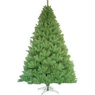 Santas Forest 61046 Sheared Noble Fir Tree 4.5Ft