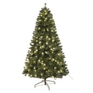Santas Forest 61970 Fir Nbl Shrd Prlt Clr Led 7Ft