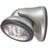 Fulcrum 20034-101 Porch Light 12 Led Silver