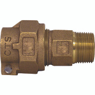 Legend Valve 313-205NL Coupling Ctsxmpt 1In