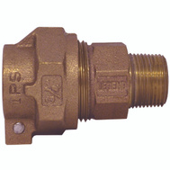 Legend Valve 313-234NL Coupling Ips Pak X Mpt 3/4