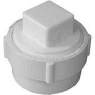 Ipex Canplas 193702AS 2 Inch Fitting Clean Out Body