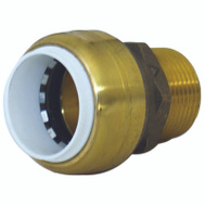 Cash Acme UIP140A Connector 1In Pvc X 1In Mnpt