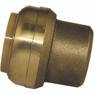 Cash Acme U520LFA Sharkbite End Cap Push Fit Brass 1In