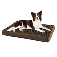 Hangzhou YF87109S-M 27X36x3 Ortho Dog Bed