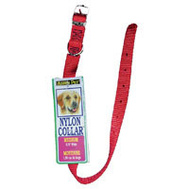 Petmate 15506 18 By 5/8 Inch Nylon Red Collar