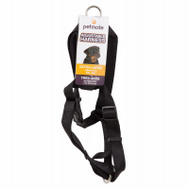 Petmate 22110 1 By 30 To 40 Inch Adjustable Black Harness