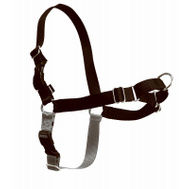 Pet Safe EWH-HC-M/L-BLK MED/LG Sport Harness